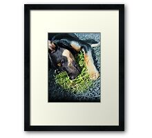 This is the place I call home... Framed Print