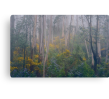Experiments in Processing # 4 - Mount Wilson NSW - The HDR Experience Canvas Print