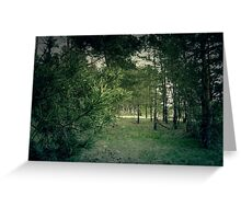 Pine Forest 4 Greeting Card