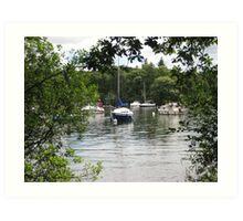 Lake Windermere  through the trees  Art Print