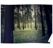 Retro Pine Forest 4 Poster