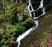 Spring Cascade  by Gary L   Suddath