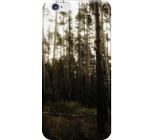 Vintage Photo of Pine Forest iPhone Case/Skin