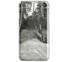 Vintage Photo of Pine Forest 4 iPhone Case/Skin