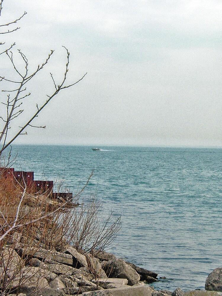 Lake St. Clair by Erika Benoit