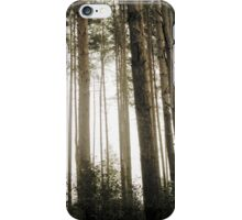 Vintage Photo of Pine Forest 9 iPhone Case/Skin
