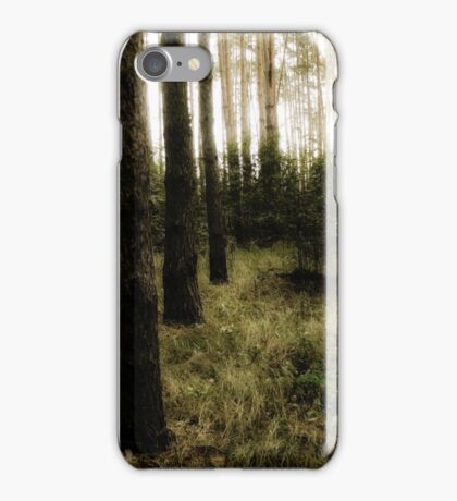 Vintage Photo of Pine Forest 10 iPhone Case/Skin