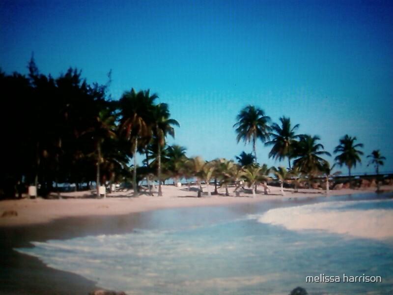 san juan (pueto rico) beach by melissa harrison
