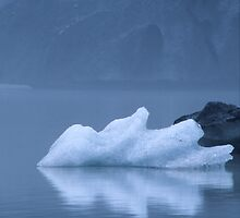 iceberg by Tony Middleton