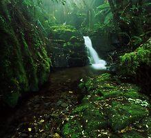 quaint chasm - Gippsland, Vic. by Tony Middleton