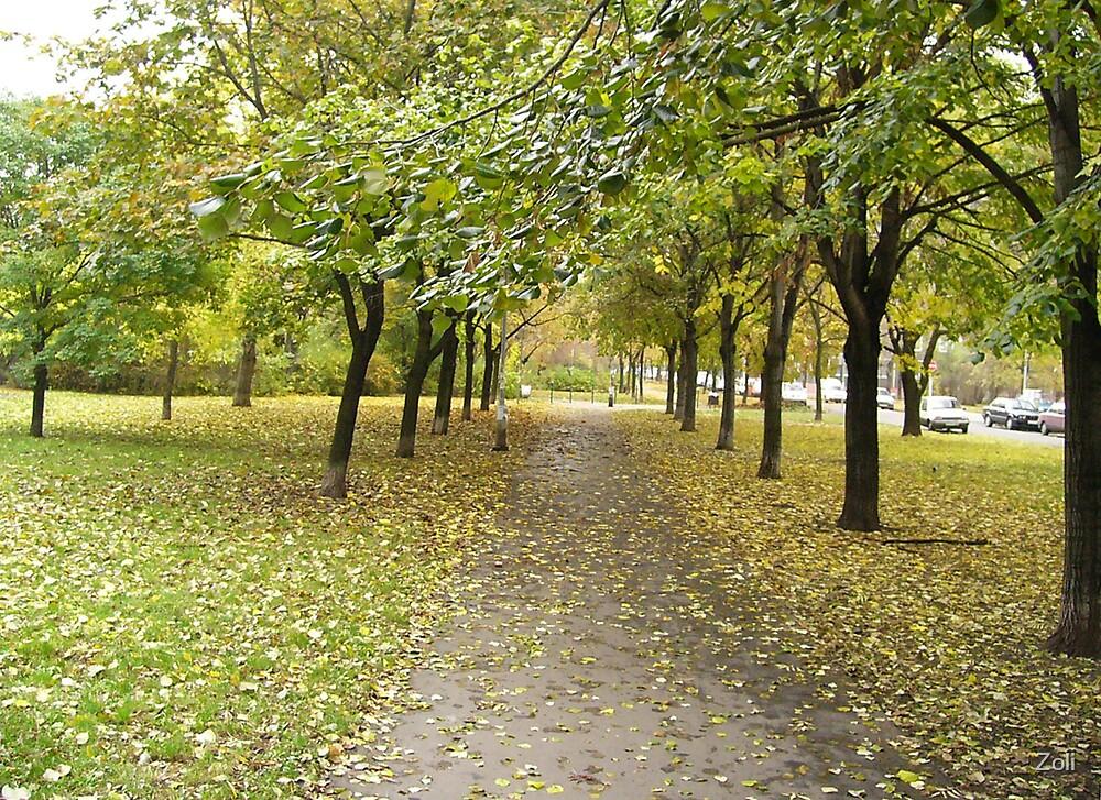 autumn by Zoli