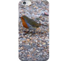 looking For Food. iPhone Case/Skin