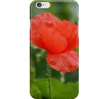 Wild Poppy iPhone Case/Skin