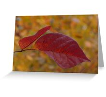 The Warm Glow of Fall - a Horizontal View Greeting Card
