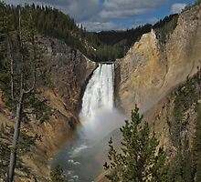 Yellowstone Falls by CraigL