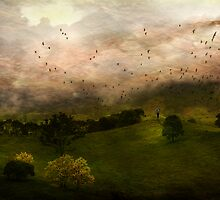 Waiting for an updraft 2,photoshopcreative07, by Jeff Davies
