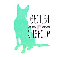 rescued by a rescue Photographic Print