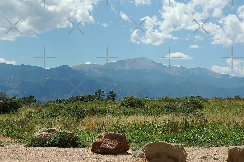 Pikes Peak In August by Holly Werner