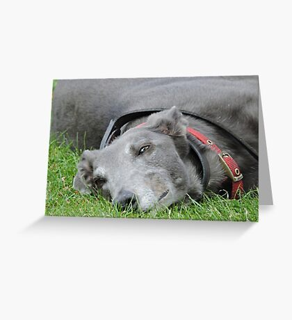 One Of Those Days: Greyhound Greeting Card