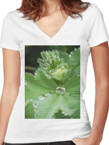 Dew Drops Women's Fitted V-Neck T-Shirt