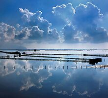 Mirroring the clouds - Messolonghi lagoon by Hercules Milas