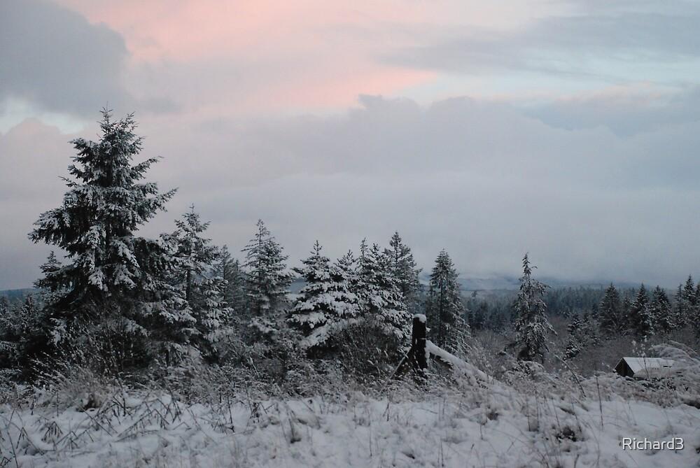Winter sunset by Richard3
