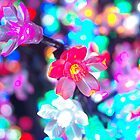 Flower lights by pinkchampagne