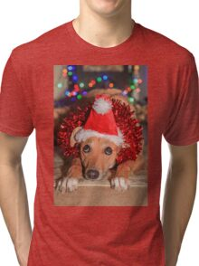 Funny Dog Wearing A Santa Hat At Christmas Tri-blend T-Shirt