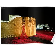 888,246 Red Poppies Poster