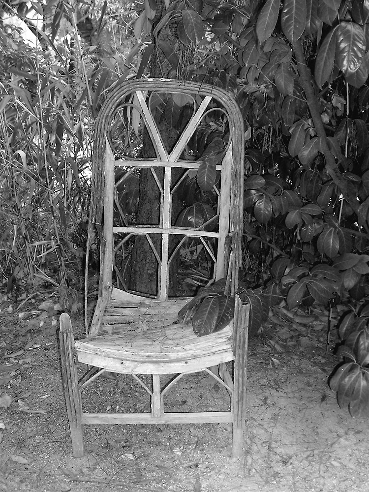 Weathered Chair by rljohns