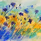 Blue cornflowers by calimero