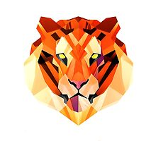 Geometric Tiger by tadbubble