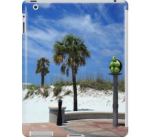 Turtle Beach, Clearwater iPad Case/Skin