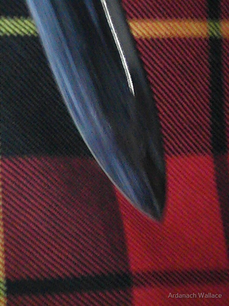 Sword & tartan by Ardanach Wallace