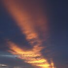 Texas Backyard Sunset by CraigL