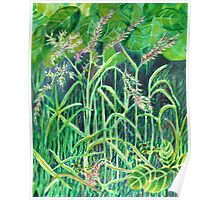 Watercolour painting, Grasses nature art Poster