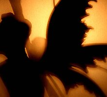 Fairy Silhouette by Lexx