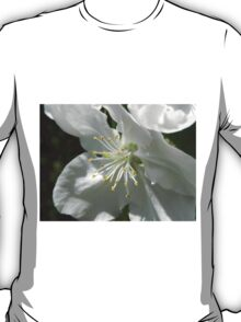Apple Blossom T-Shirt