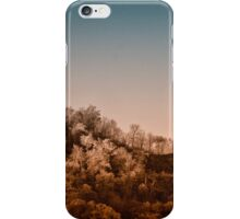 Fall in Infrared iPhone Case/Skin