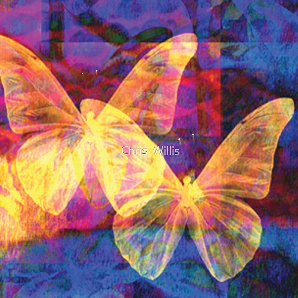 Golden Flutter by Chris  Willis