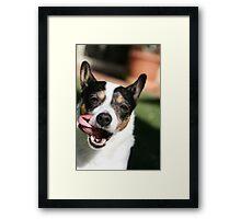 Goofy Dog Framed Print