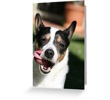 Goofy Dog Greeting Card