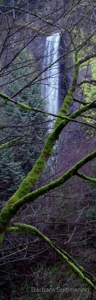 Latourelle Falls Deep In The Woods by Barbara Summering