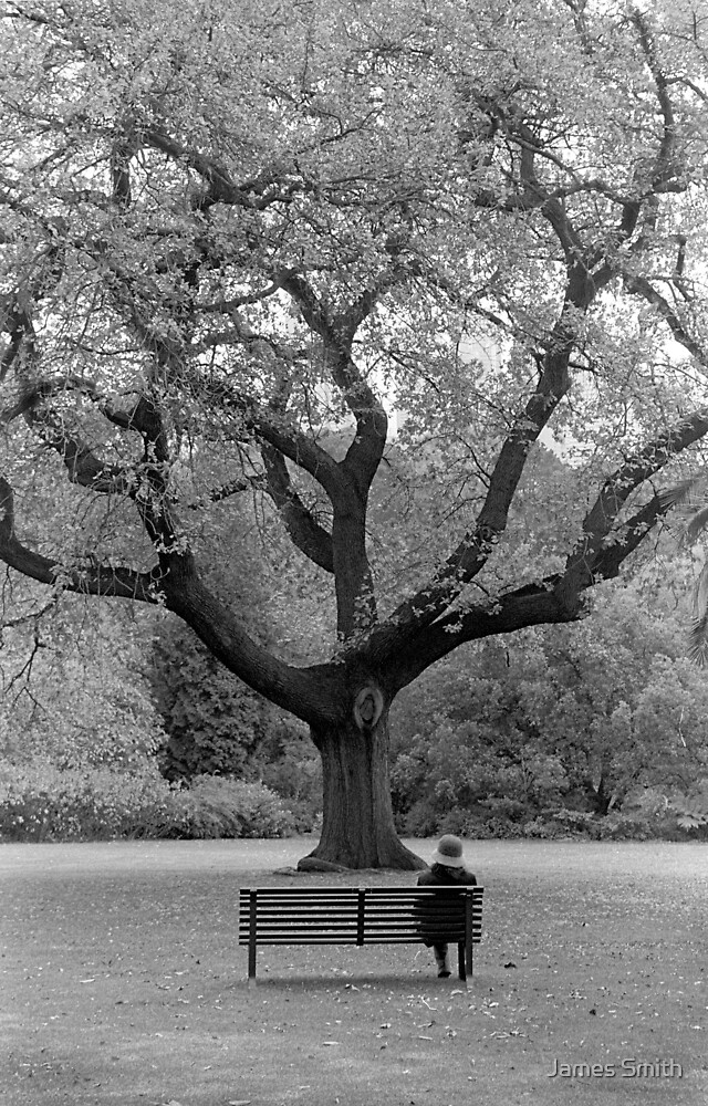 Tree of thought by James Smith
