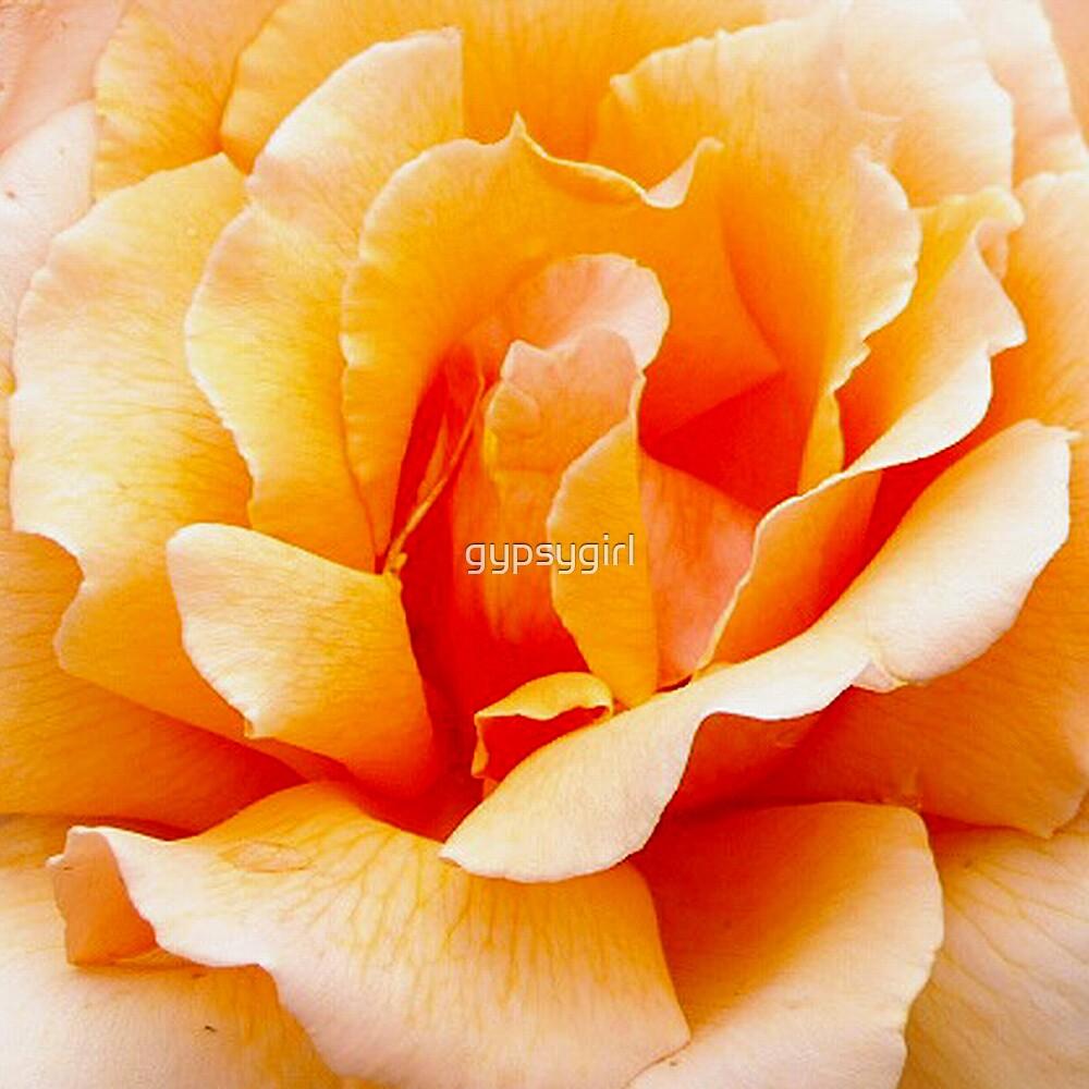 Peach by gypsygirl