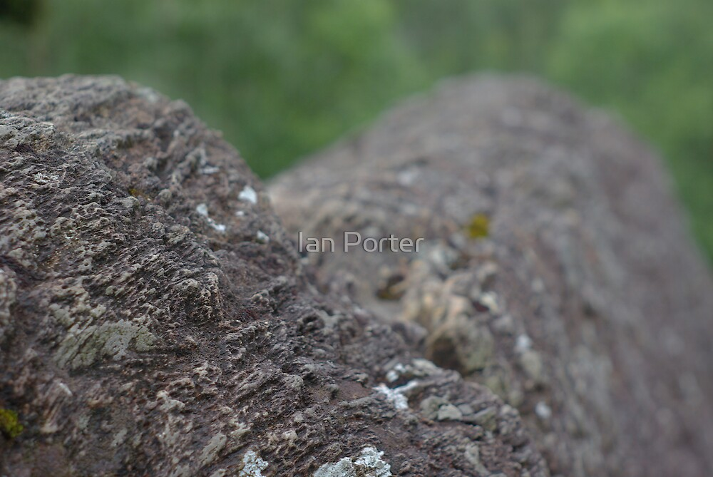 rock ridge close up by Ian Porter