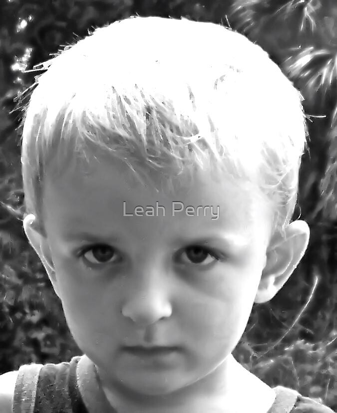 The Boy. by Leah Perry