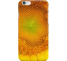 Sunflower 7 iPhone Case/Skin