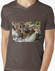 Wasps Black and Orange 5 (c)(t), a moment of their life  by Olao-Olavia par Okaio Créations Mens V-Neck T-Shirt