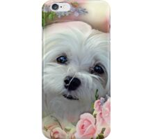 Snowdrop the Maltese - The Face that Melts my Heart iPhone Case/Skin